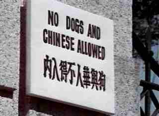 no dogs or chinese.jpg